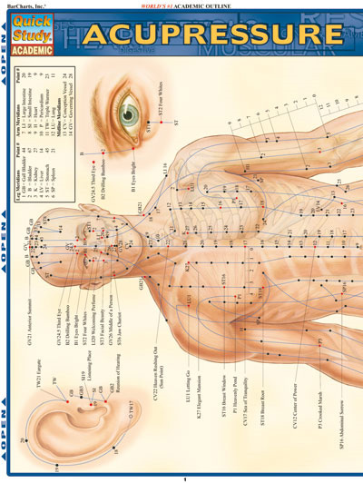 GED Study Guide | Science Lesson 2 The Human Body