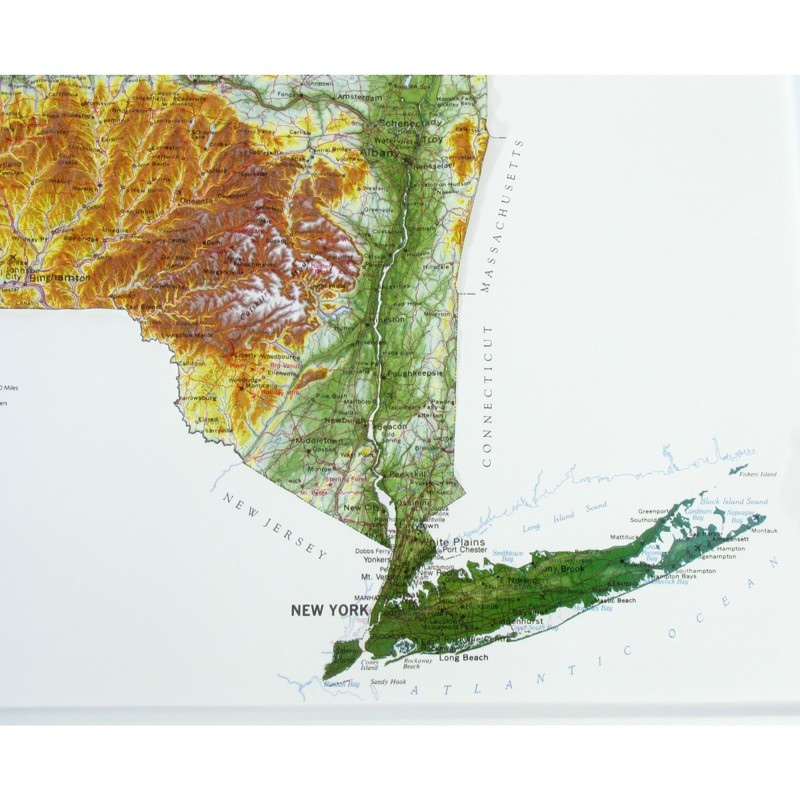 Hubbard Scientific Raised Relief Map: New York State, Gold Frame
