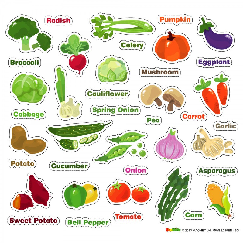 American Educational Magnetic Wall Stickers: Vegetables