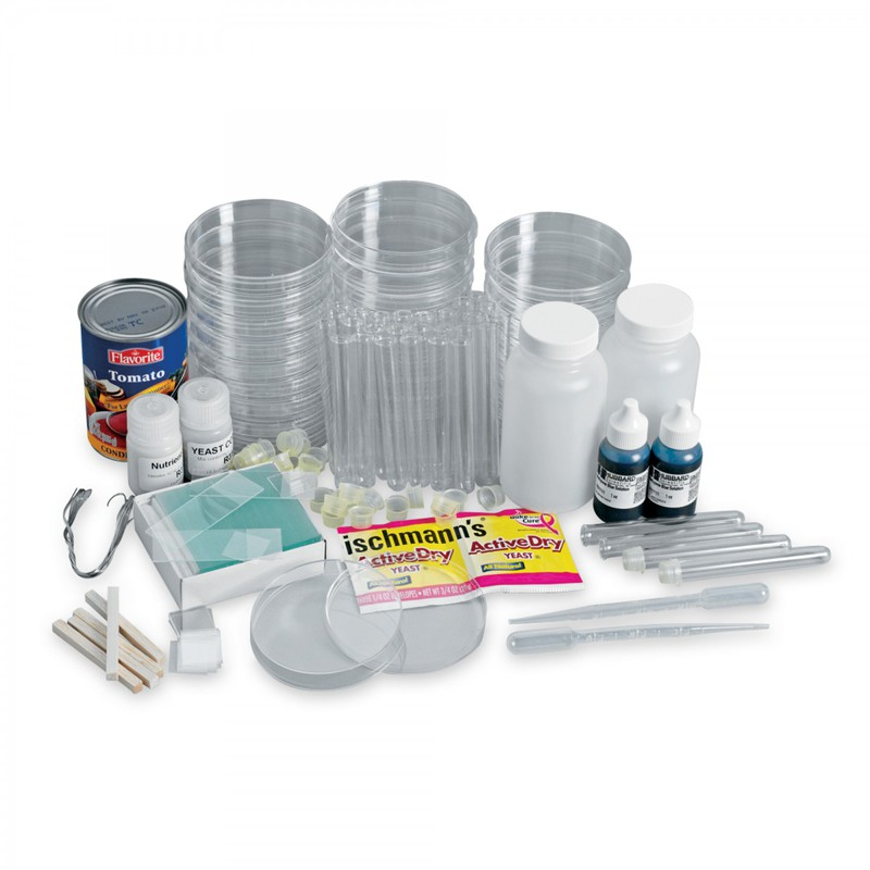 American Education Introduction Into Microbiology Kit