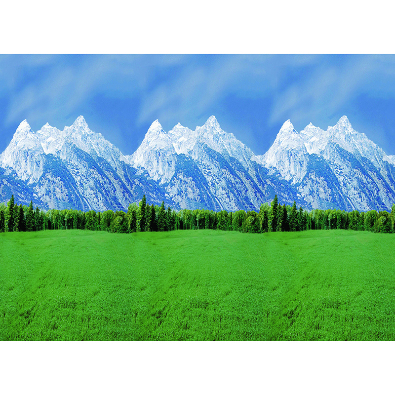 Fadeless 48x50 Roll Mountains Boxed