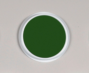 Ready 2 Learn® Jumbo Circular Washable Green Pad