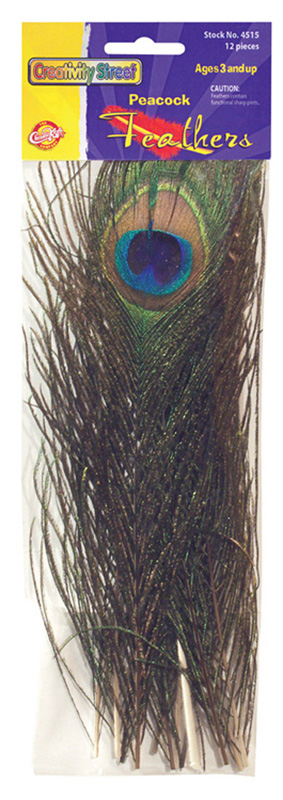 Creativity Street® Peacock Feathers