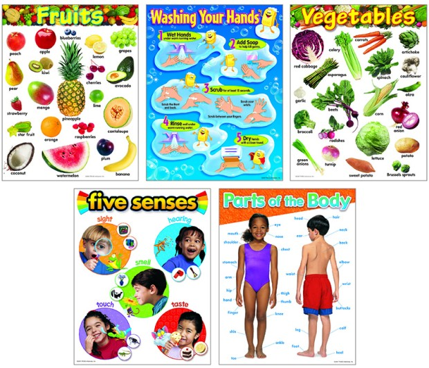 Healthy Living Learning Charts Combo Pack