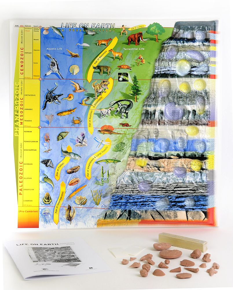 Scott Resources & Hubbard Scientific Life On Earth: A Fossil History Model