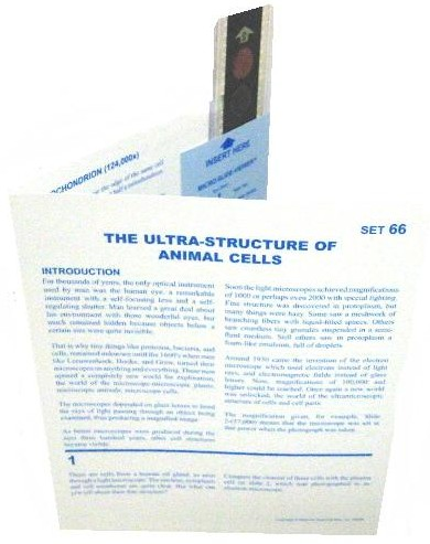 Microslide The Ultra-Structure of Animal Cells: Set of 10 with Box