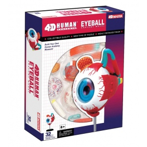 Tedco Toys Human Anatomy - Eyeball