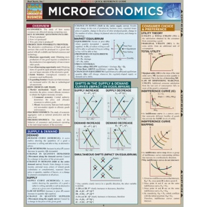 micro economics study questions Definition of microeconomics (chapter 11, 12, and 13 in text chapter 11 and  12 in knewton and lecture notes) what is the definition of economics given in.