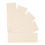 Flash Cards Blank 2x3