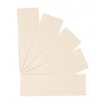 Flash Cards Blank 3x9