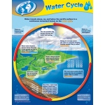Water Cycle Chart