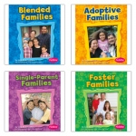 My Family Book Set Set Of 4
