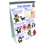 Flip Charts All About Me Early Childhood Science Readiness