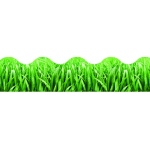 Grass Terrific Trimmers
