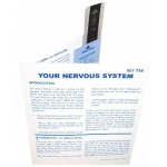 Microslide Your Nervous System: Set of 15 with Box