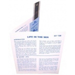 Microslide Life In The Sea: Set of 10 with Box