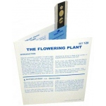 Microslide The Flowering Plant: Set of 30 with Box