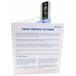 Microslide From Tadpole To Frog: Set of 15 with Box