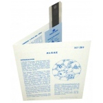 Microslide Algae: Set of 30 with Box