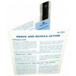 Microslide Nerve and Muscel Action: Set of 15 with Box