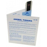 Microslide Animal Tissues Epithelium Cartilidge: Set of 30 with Box