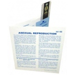Microslide Asexual Reproduction: Set of 10 with Box