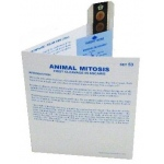 Microslide Animal Mitosis: Set of 15 with Box