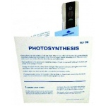 Microslide Photosynthesis: Set of 30 with Box