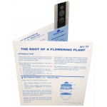 Microslide Root Of Flowering Plant: Set of 10 with Box