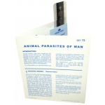 Microslide Animal Parasites of Man: Set of 15 with Box