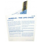 Microslide Aurelia - The Life Cycle: Set of 10 with Box