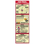 Atoms Elements Molecules Compounds Colossal Poster