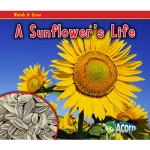 Capstone / Coughlan A Sunflower's Life