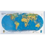"American Education World Geo-Physical: 38"" x 20"", Gold Frame"