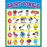 Short Vowels Chart 17 X 22