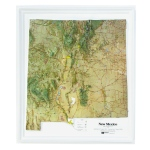 American Education Raised Relief Map: New Mexico NCR Series