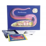 Scott Resources & Hubbard Scientific Earthworm Model Activity Set