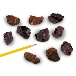 Igneous Rocks Scoria: Pack of 10