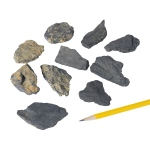 Mineral Black In Schist: Graphite, Pack of 10