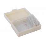 Ginsberg Prepared Glass Microscope Slides: Amphibians & Frogs, Set of 10