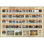 Scott Resources & Hubbard Scientific United States Fossils, Gems & Rocks State by State