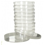 American Education Cham Petri Dish: Set of 10