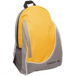 Economy Backpack 2 Tone Gold/gray