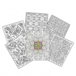 2 Pocket 6pk Adult Designs Paper Ucolor Folders
