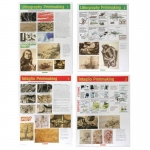 American Educational Printmaking Posters Set 2