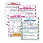 Algebraic Equation Teach Poster Set