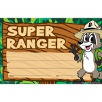 Ranger Rick Super Ranger Awards