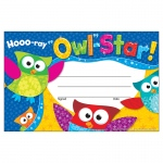 (12 Pk) Hooo Ray Owl Star Recognition Awards