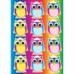 (6 Pk) Die Cut Magnets Color Owls