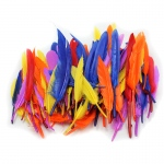 (12 Pk)duck Quills Feathers 14g Per Bag